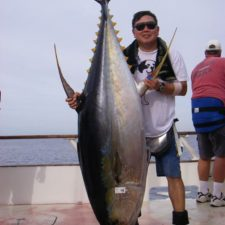 big tuna royal star 6